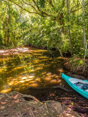 Kayak on tropical rainforest river in Saco do Mamangua, Paraty, Costa Verde region in south Rio de Janeiro, Brazil